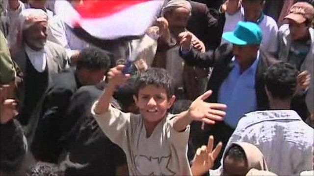 Child waving flag in protests