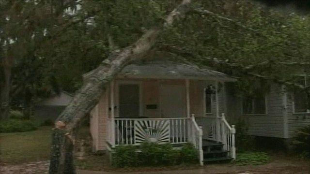 Tree damaged home