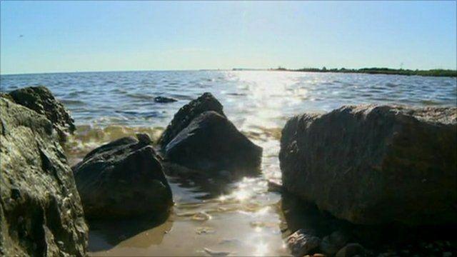 Rocks on Gulf Coast shore