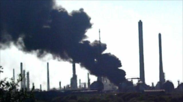 Chevron plant