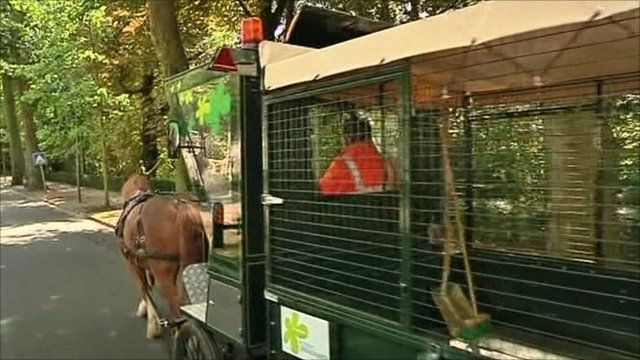 Horses pulling a rubbish collection cart