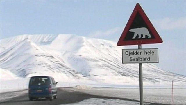 Polar bear warning sign in Norway
