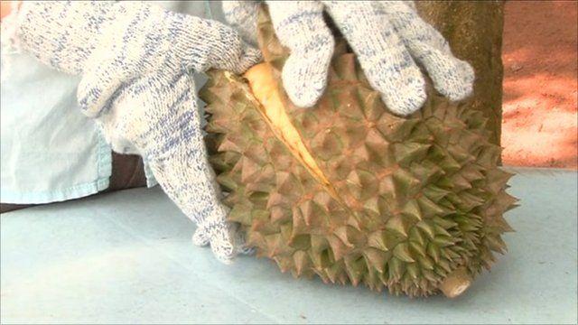 A durian