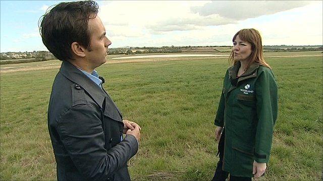 The BBC's Tim Muffett speaks with Georgina McLeod from The Woodland Trust