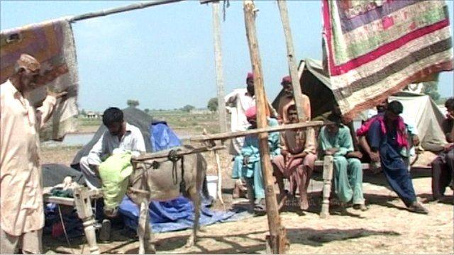 Donkey-driven fan in Balochistan, Pakistan