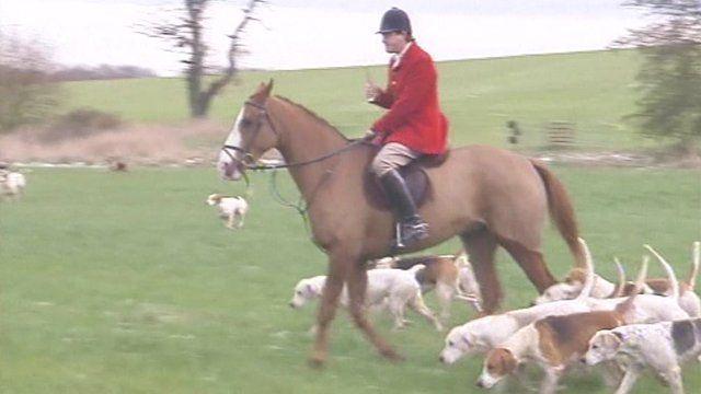 Foxhunting scene