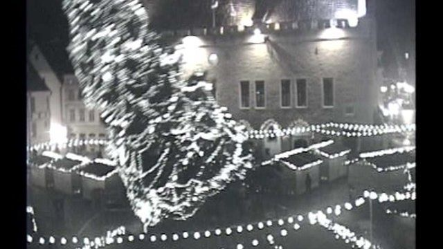 Christmas tree in estonian capital felled by gales bbc news