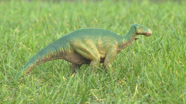Toy Iguanodon dinosaur
