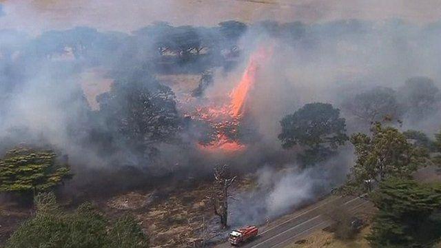 Fire truck near burning trees