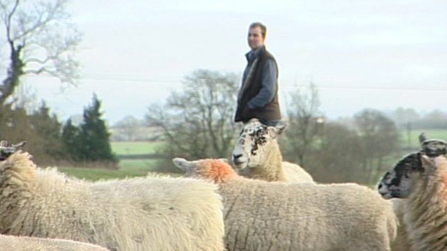 Andrew Rees on his farm in Kings Norton