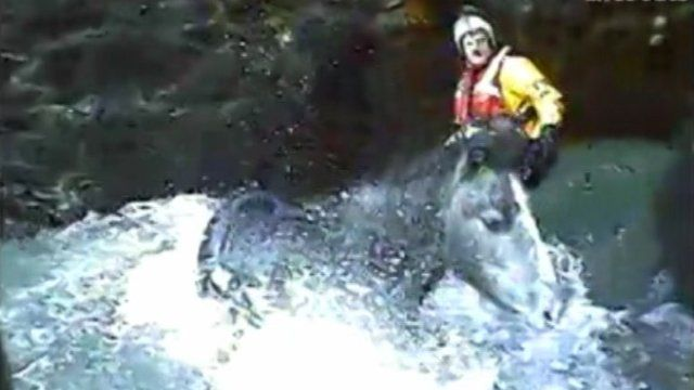 Lifeboat crews trying to rescue a horse trapped in a small cove