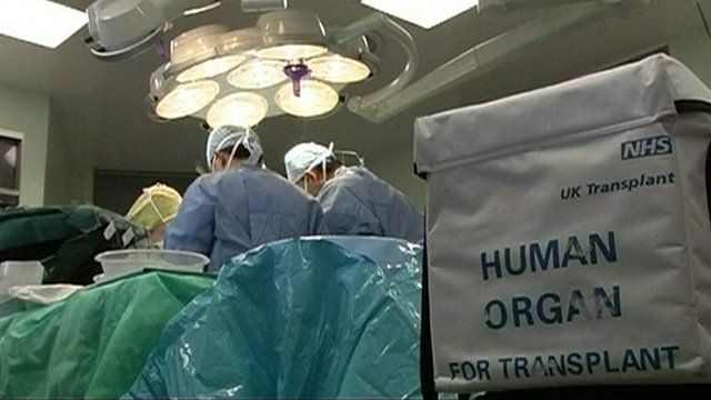 Surgeons in the operating theatre with human organ transplant cool-box