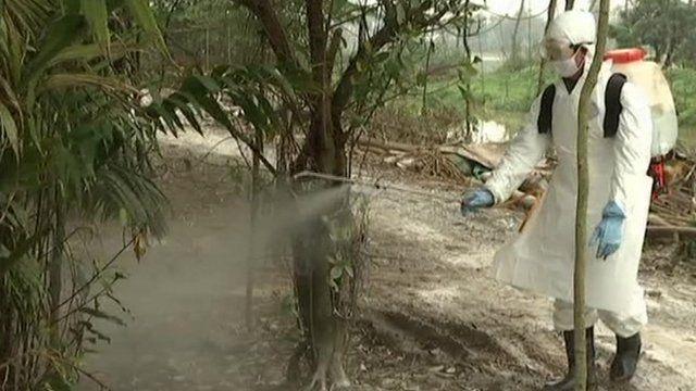 Spraying operation