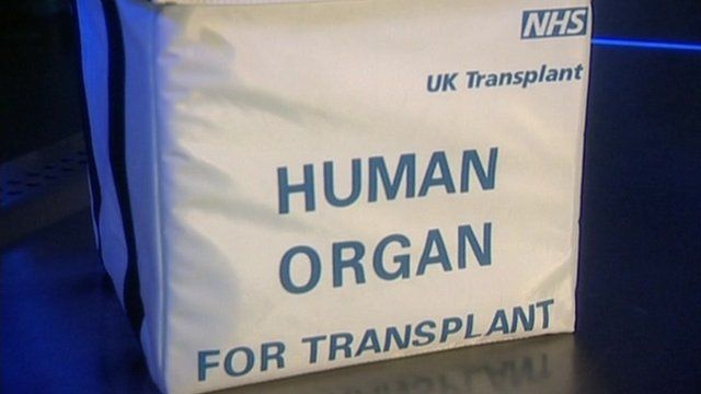 Donor organ container