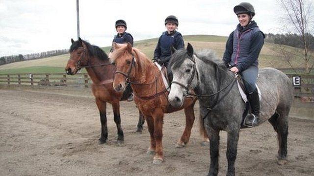Ponies at Dryden Centre