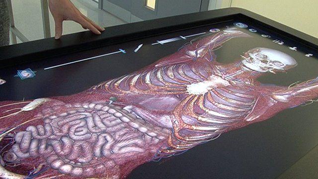 Digital Cadaver