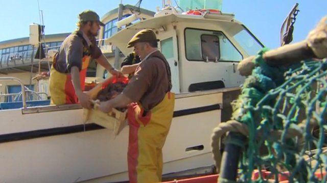 Cromer crab fishermen