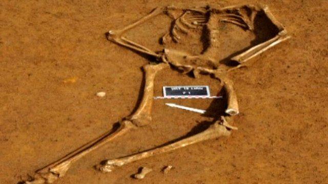 Unearthed skeleton in Belgium,