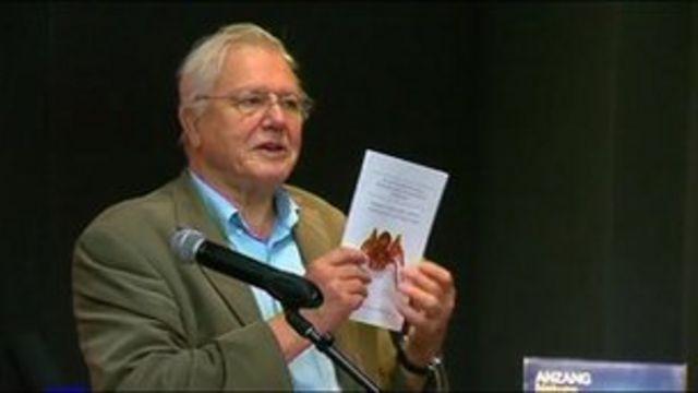 Sir David Attenborough at spider naming acceptance ceremony