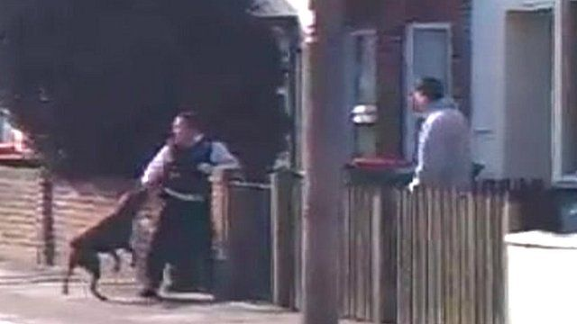 Amateur video shows the dog attacking police officers