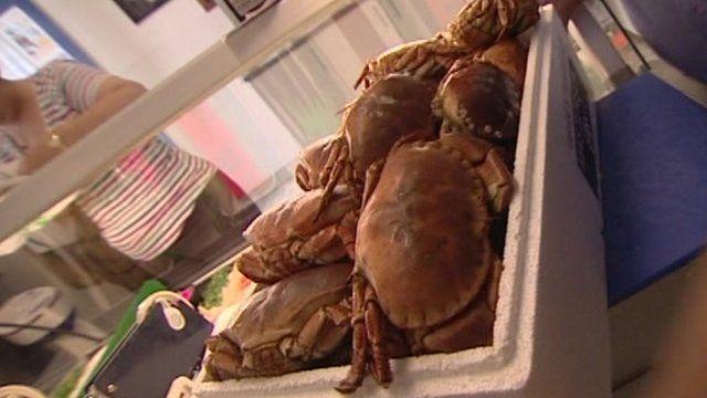 Cromer crabs