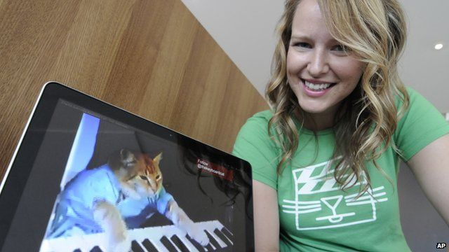 Katie Hill with a video of a cat playing the keyboard