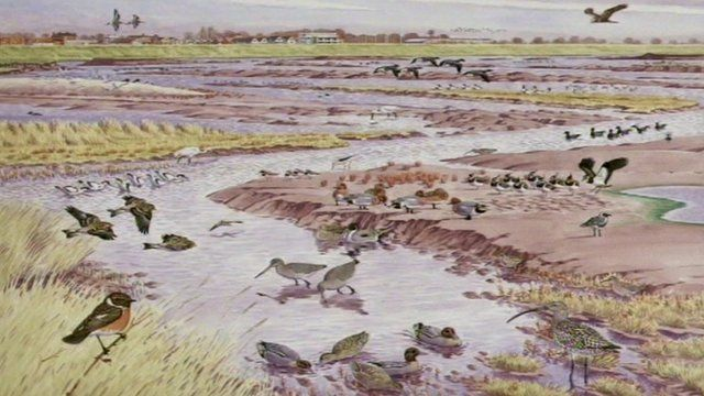 Artist's impression of the reserve