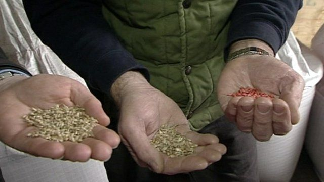 People holding crops