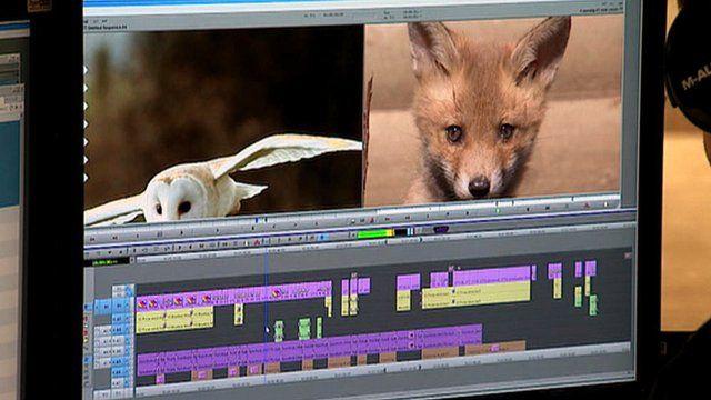 Video editing computer software