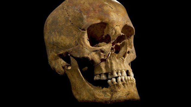 Skull of the skeleton found at the Grey Friars excavation in Leicester