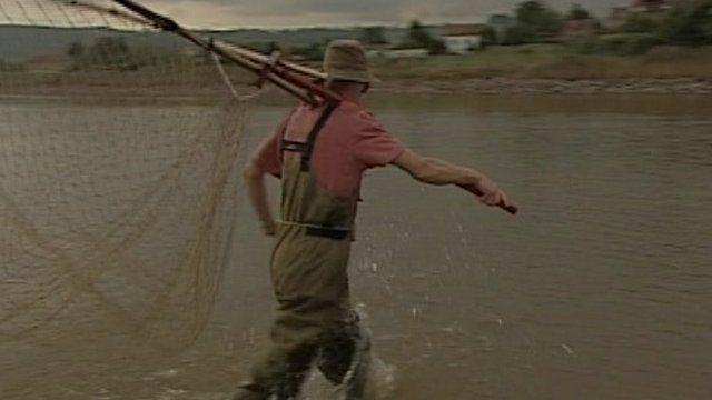 Salmon fisherman on the Severn