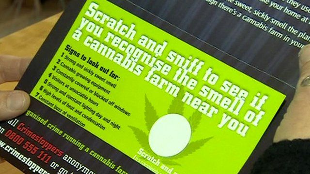 A cannabis scratch and sniff card being opened