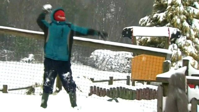 A snowball is thrown by a young boy