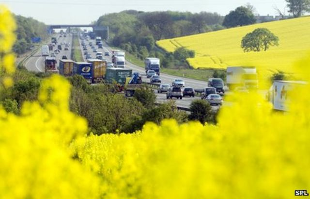Biofuels: 'Irrational' and 'worse than fossil fuels'