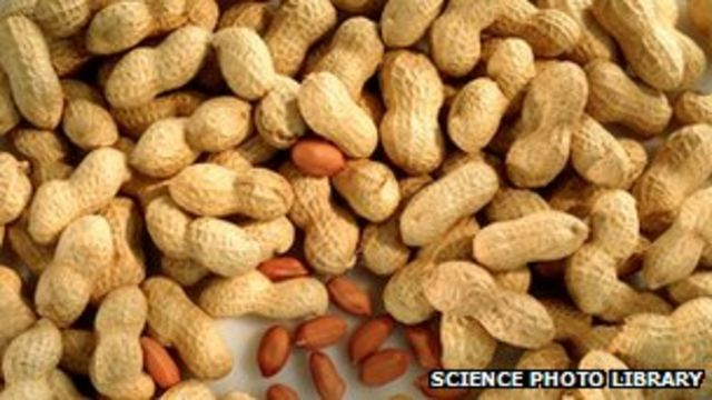 Store pulls monkey nuts from shelves over 'peanut warning'