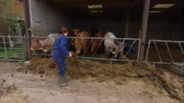 Derbyshire farmer Angela Sargent