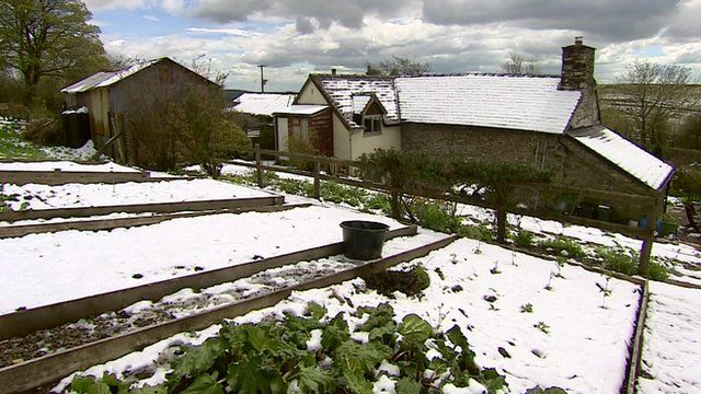 Snow in Shropshire
