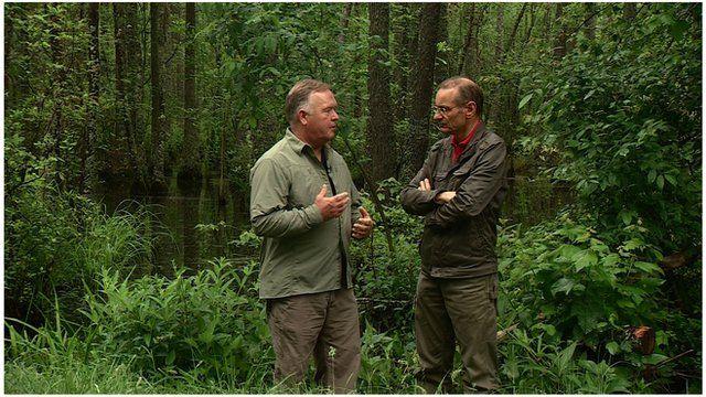 Roger Harrabin talking to an environmentalist in a forest