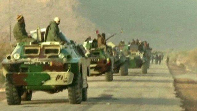 Mali army