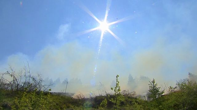 Grass and gorse fire in Port Talbot