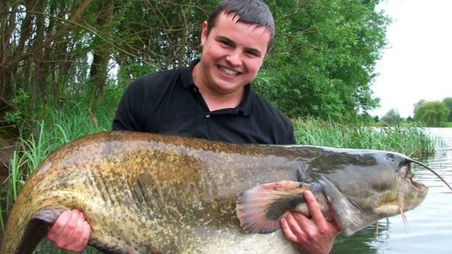 Daniel Sibley and the giant catfish