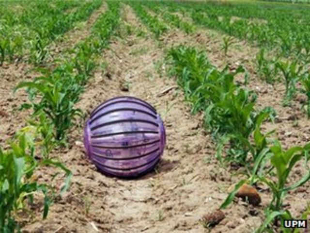 Rolling robot offers help to farmers