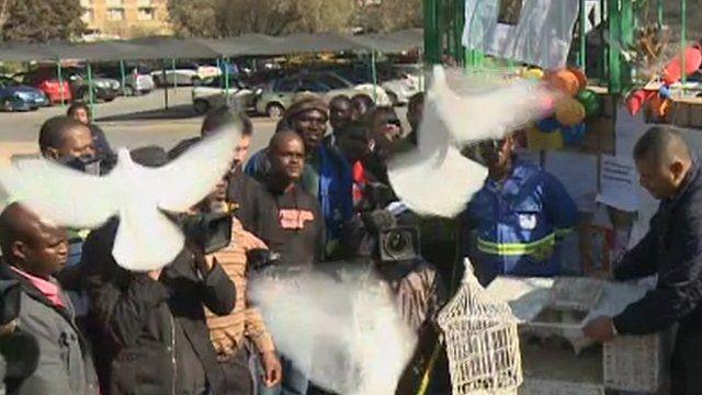 Doves released at hospital in Pretoria