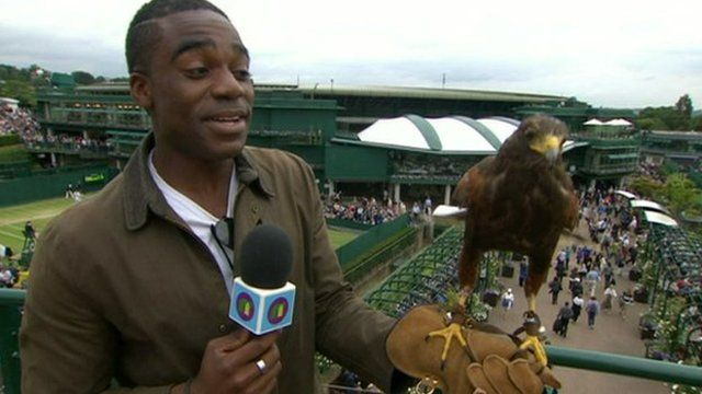 Ore with Rufus the hawk