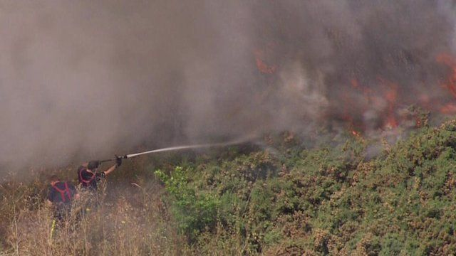Fire fighters tackling grass fire in south London