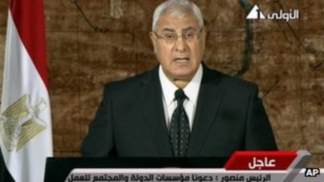 Egypt President Adly Mansour in first public address