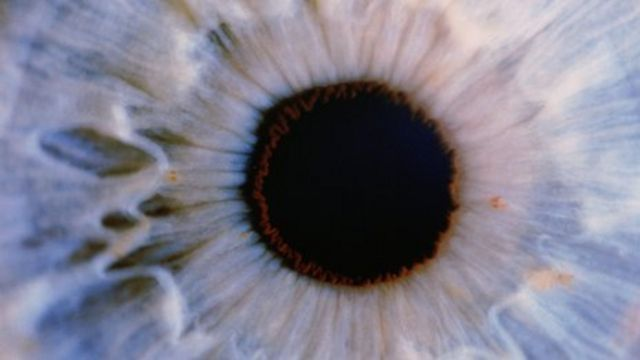 'Big leap' towards curing blindness in stem cell study