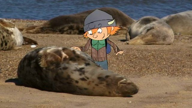 Cartoon explorer Wildlife Jack with seal