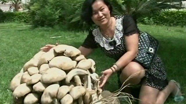 Woman posing with mushrooms