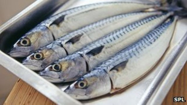 Eating oily fish 'halves rheumatoid arthritis risk'